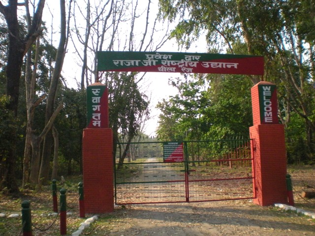 Tickets and Entries to Rajaji National Park